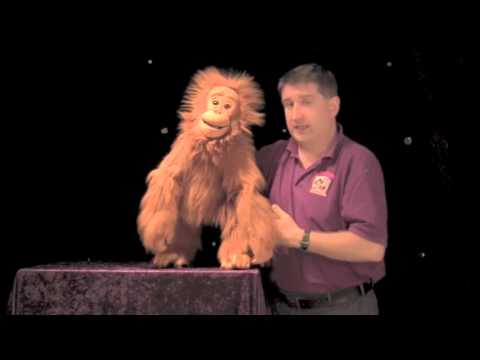 Steve Axtell puppetry